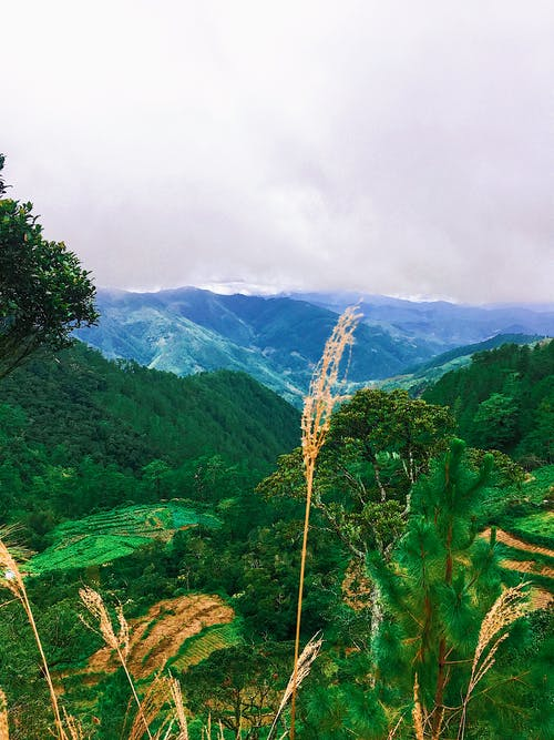 Základová fotografie zdarma na téma denní světlo, fotka zvysokého úhlu, hory, krajina