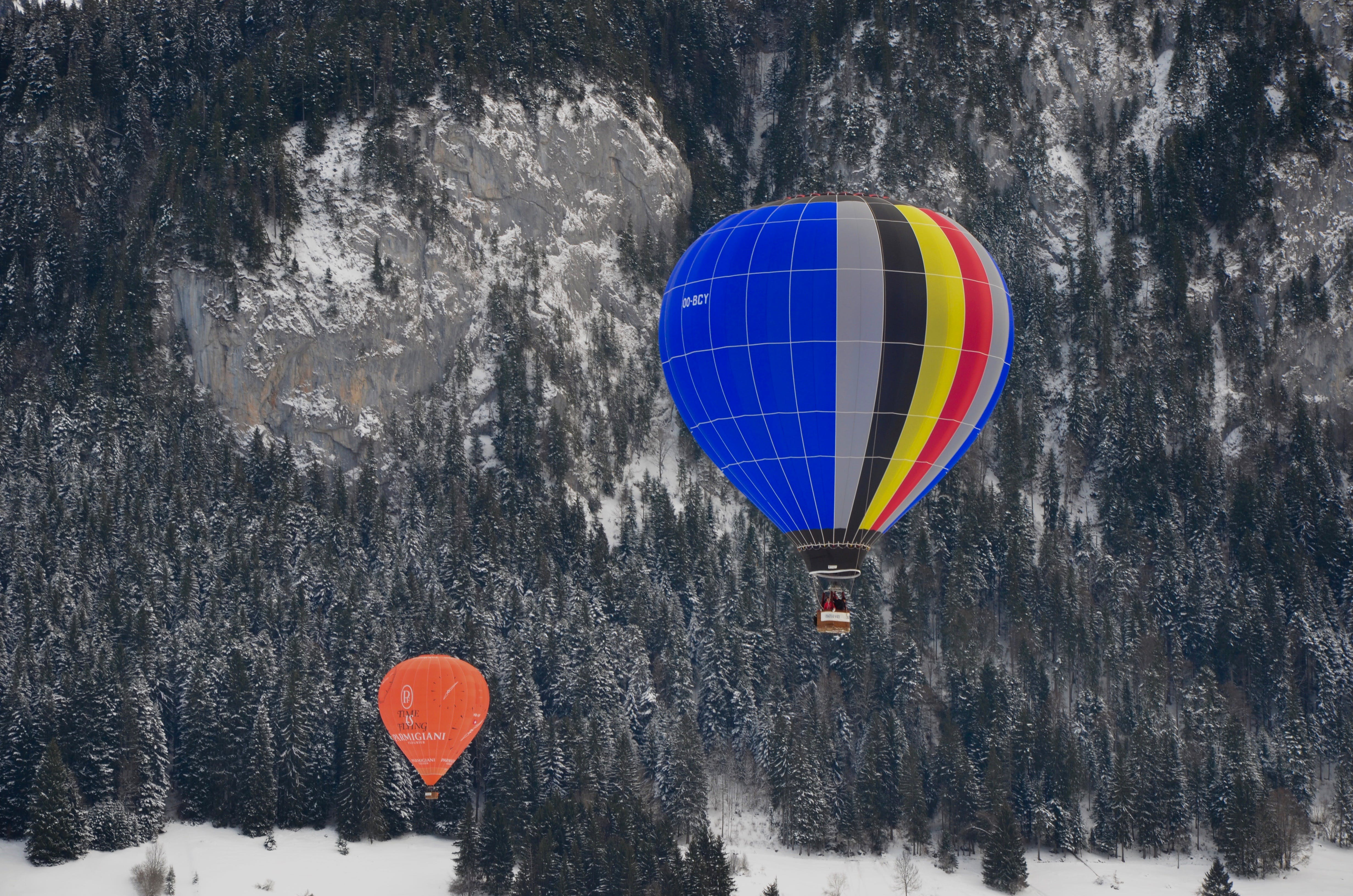 Two Assorted-color Hot Air Balloons over Green Trees