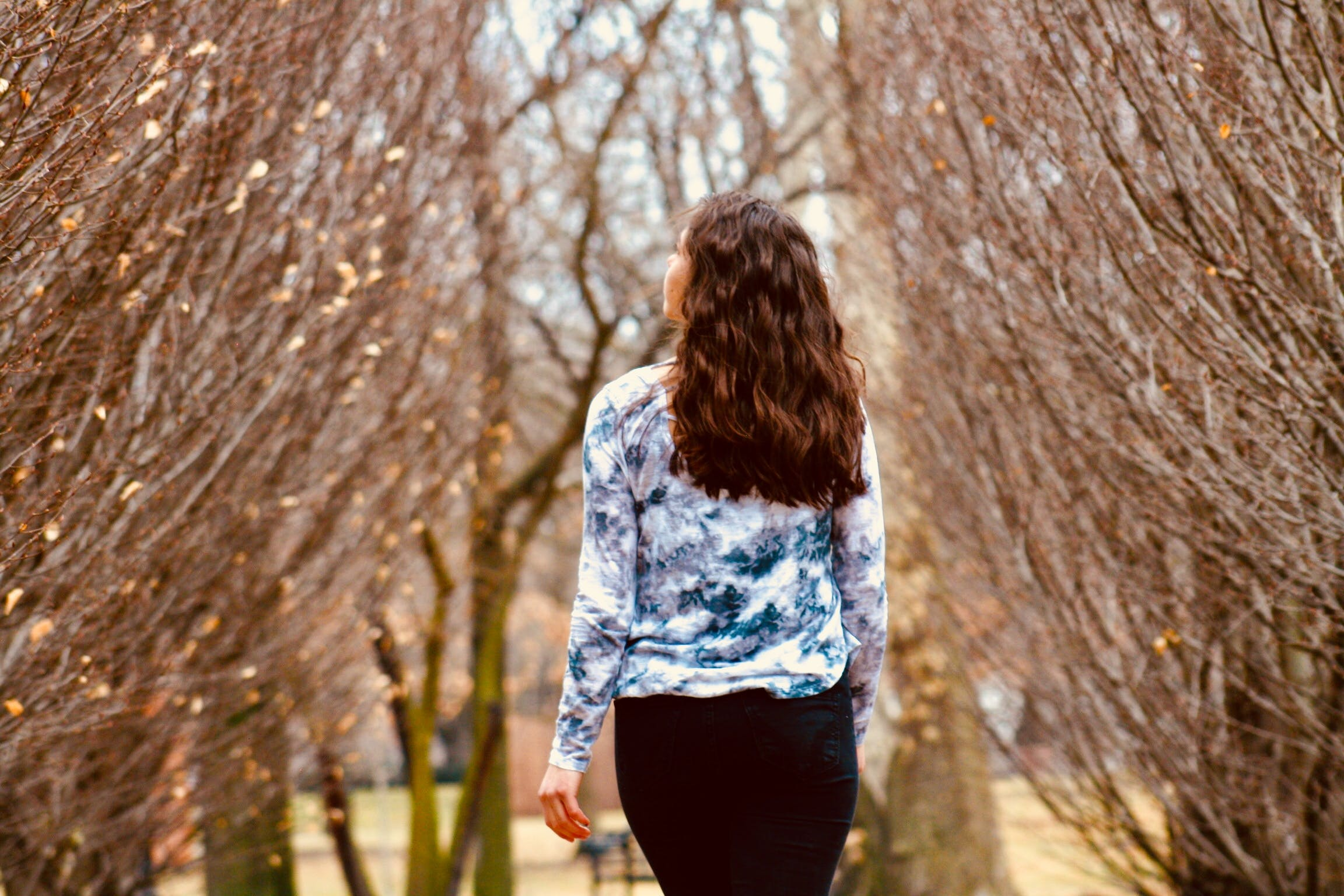 Woman in Blue and White Long-sleeved Shirt Walking Along Leafless Tree