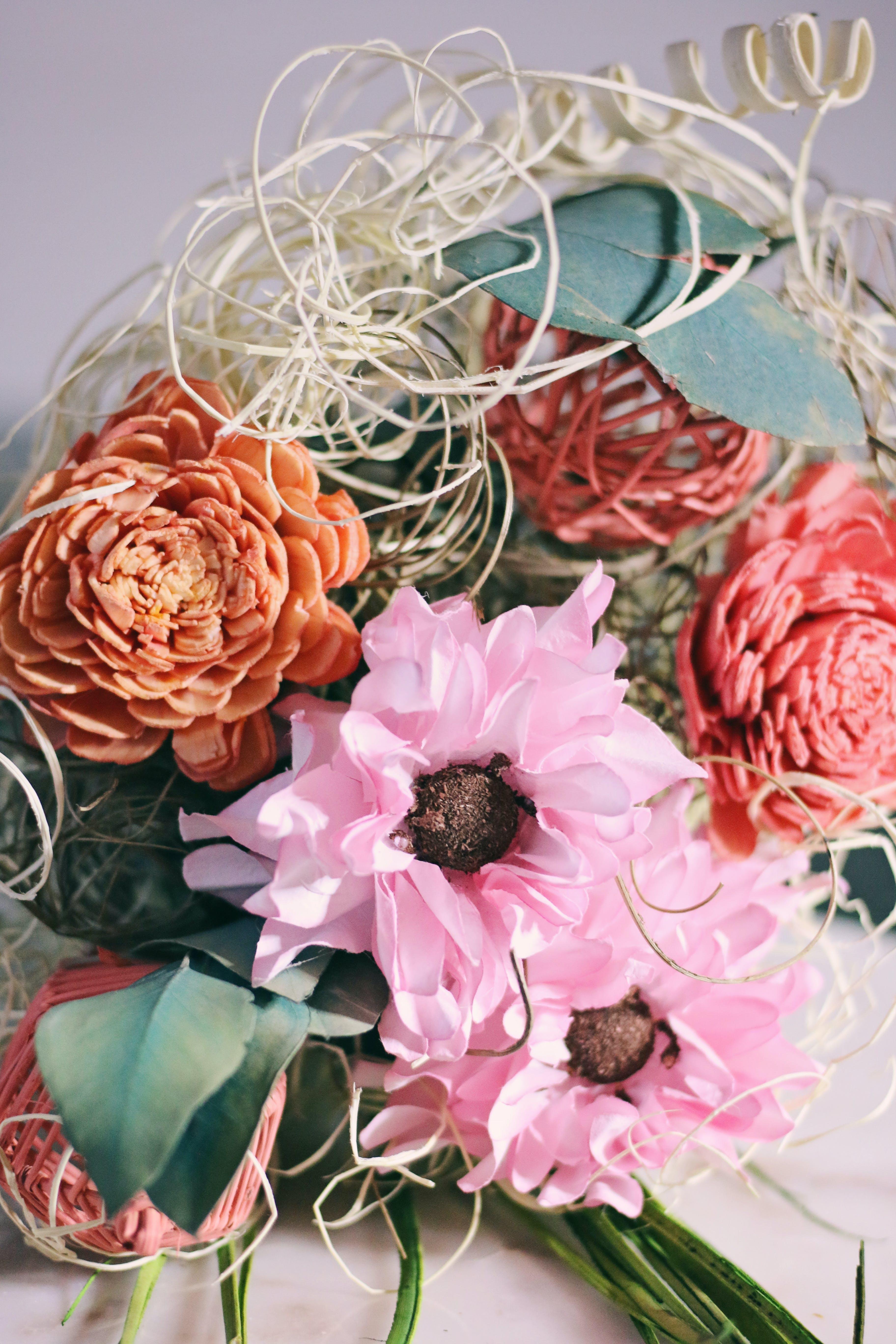 Δωρεάν στοκ φωτογραφιών με ανθίζω, άνθος, λουλούδια, μπουκέτο