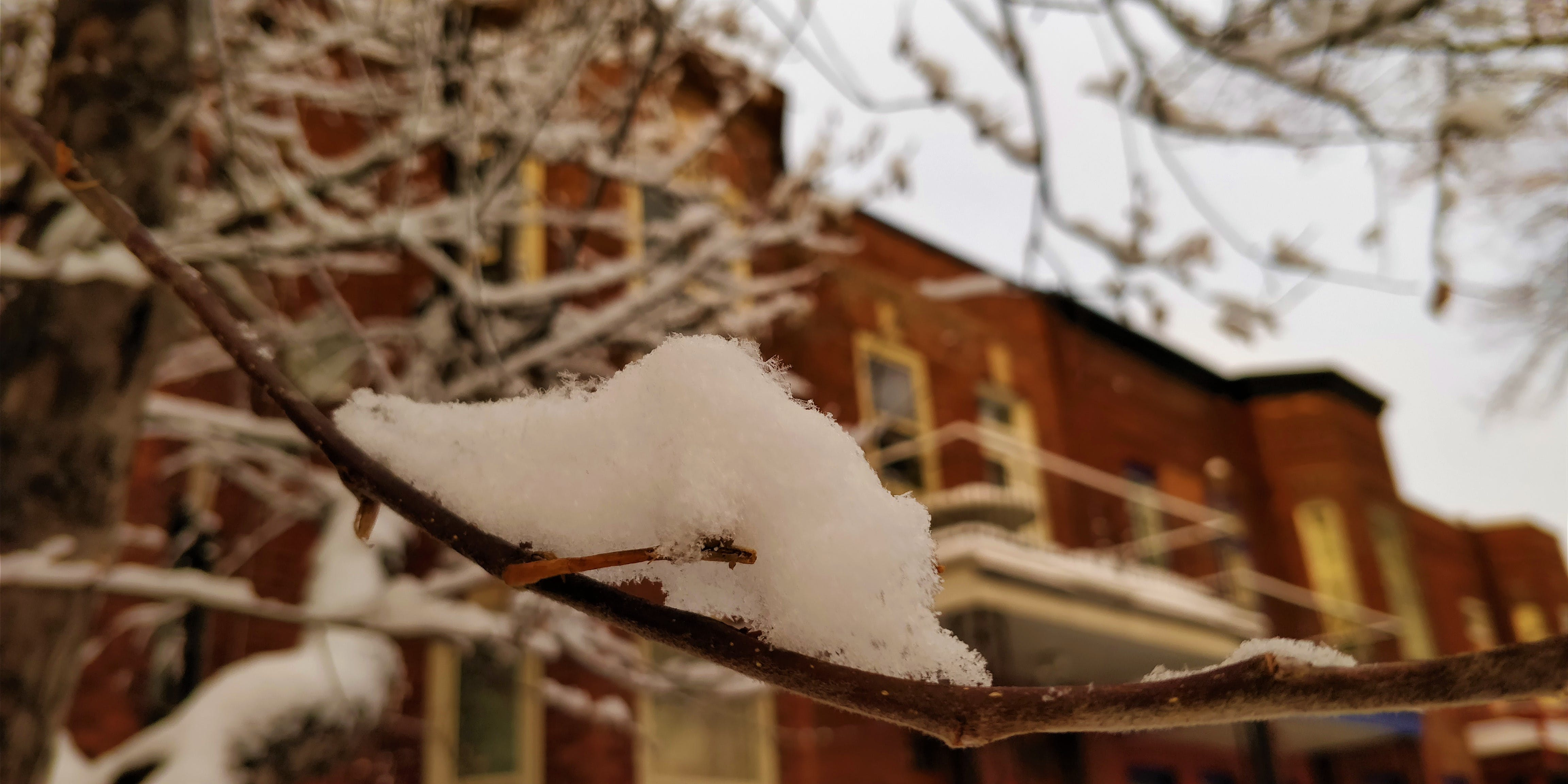 Free stock photo of blurred background, daytime, house, snow