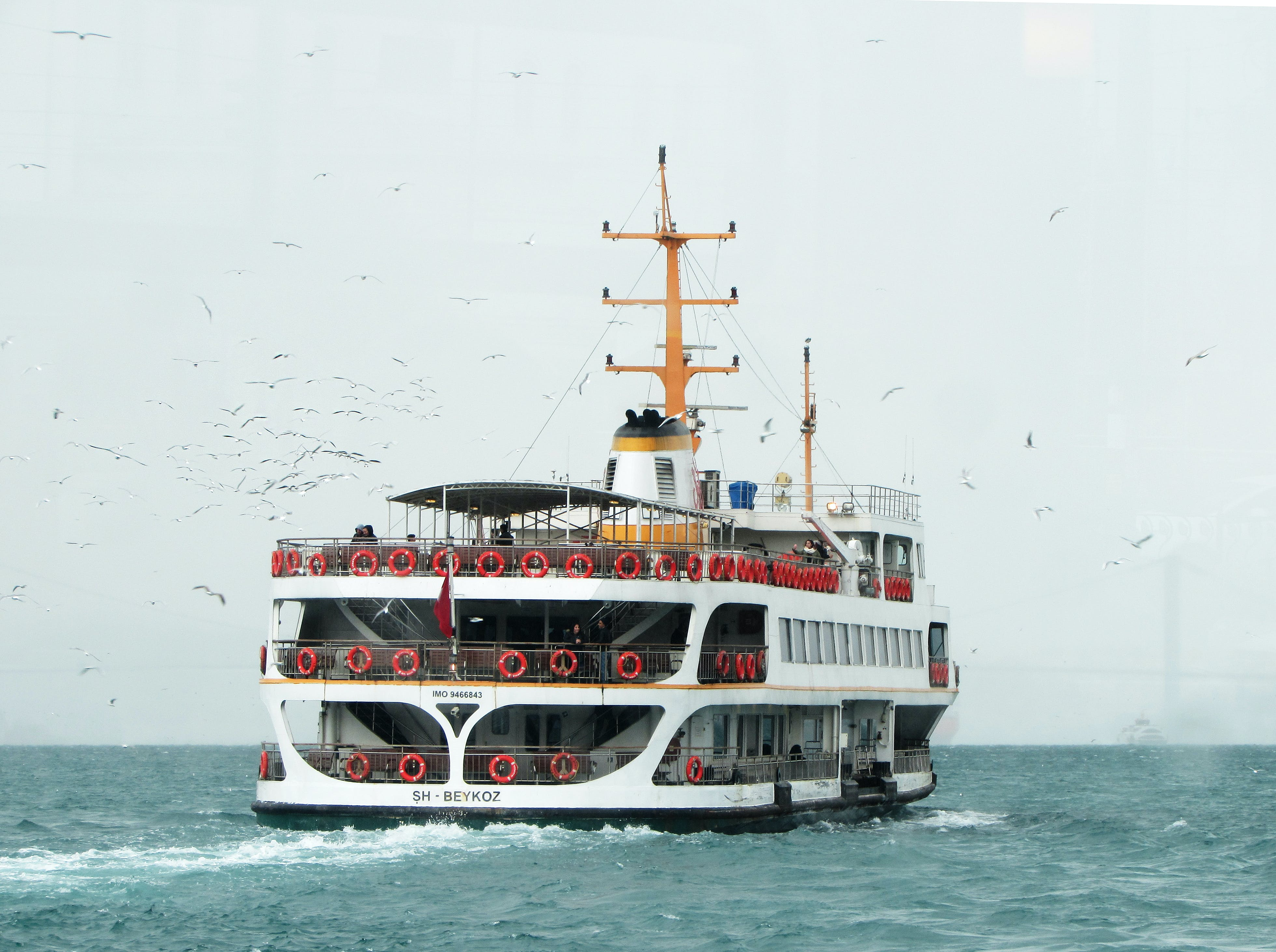 White Ship Traveling Through Vast Body of Water With White Birds Flying Beside