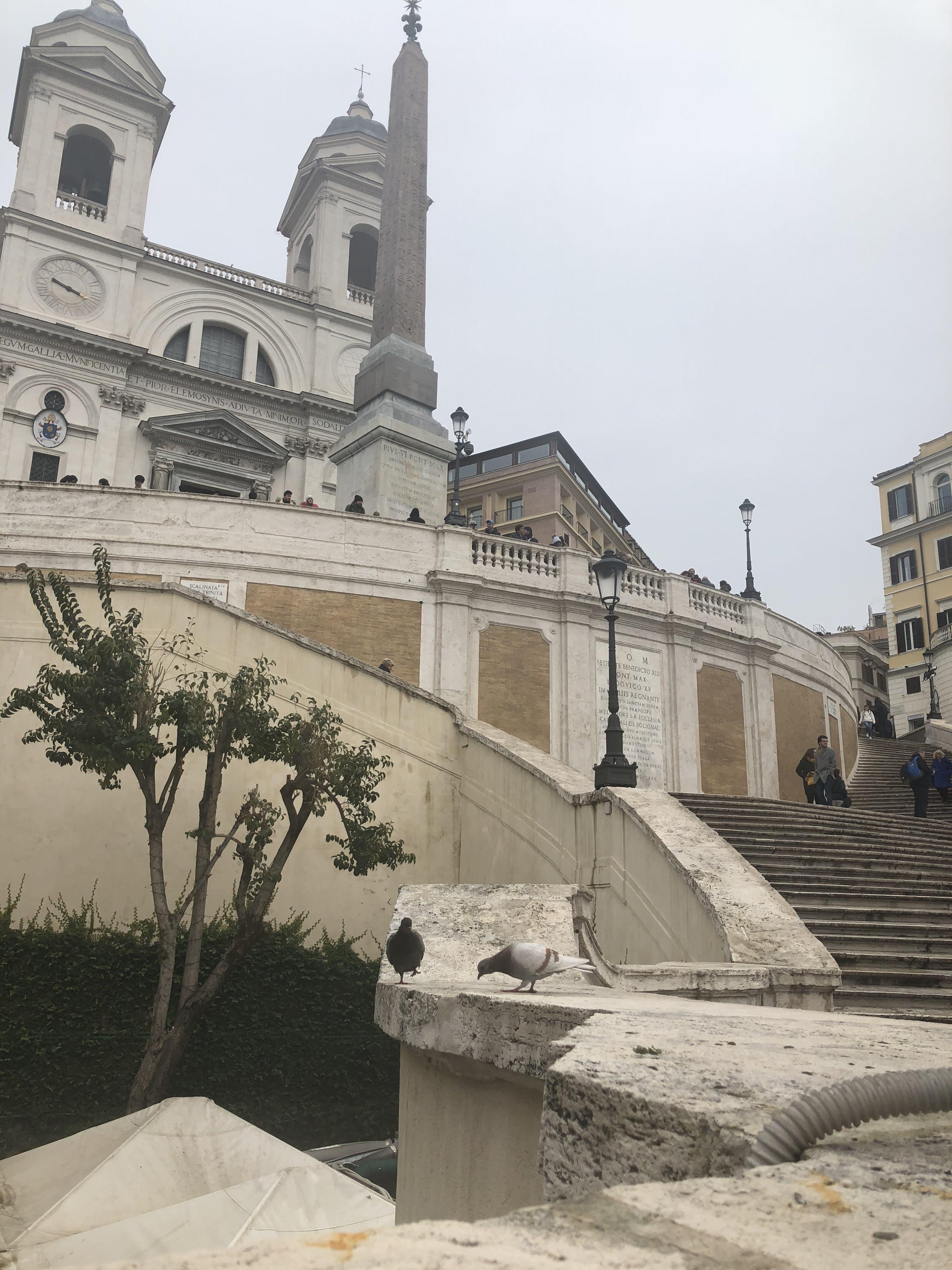 Fotos de stock gratuitas de Italia, mobilechallenge, pasos en español, Roma