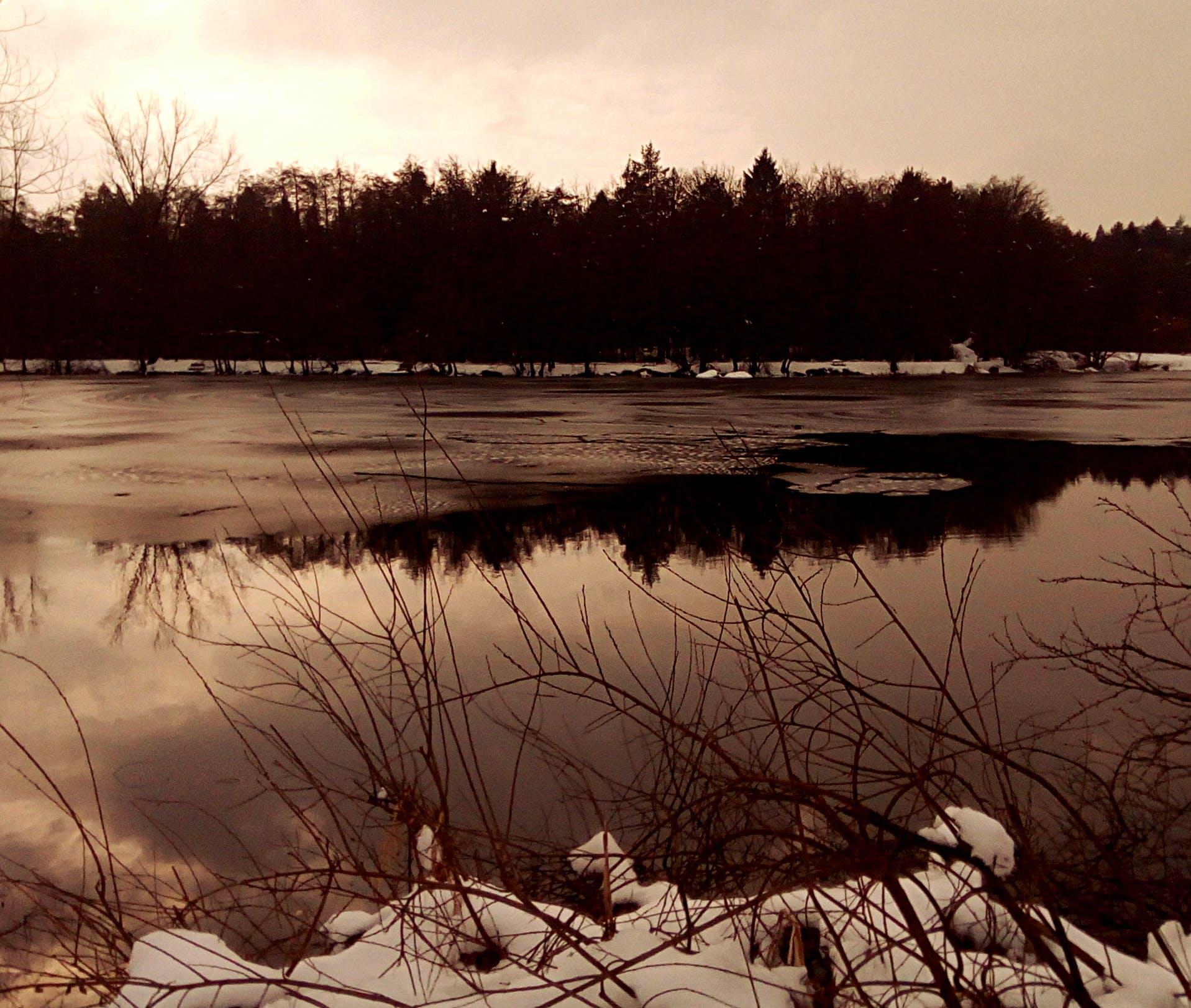 Free stock photo of lake, snow