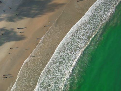 夏天, 娛樂, 水, 海 的 免费素材照片