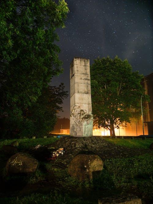 Foto profissional grátis de árvores, bunker, céu, escuro