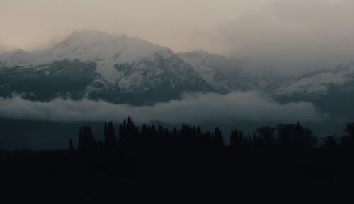 Fotos de stock gratuitas de amanecer, árbol, frío