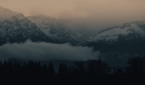 Fotos de stock gratuitas de alpen, amanecer, árbol