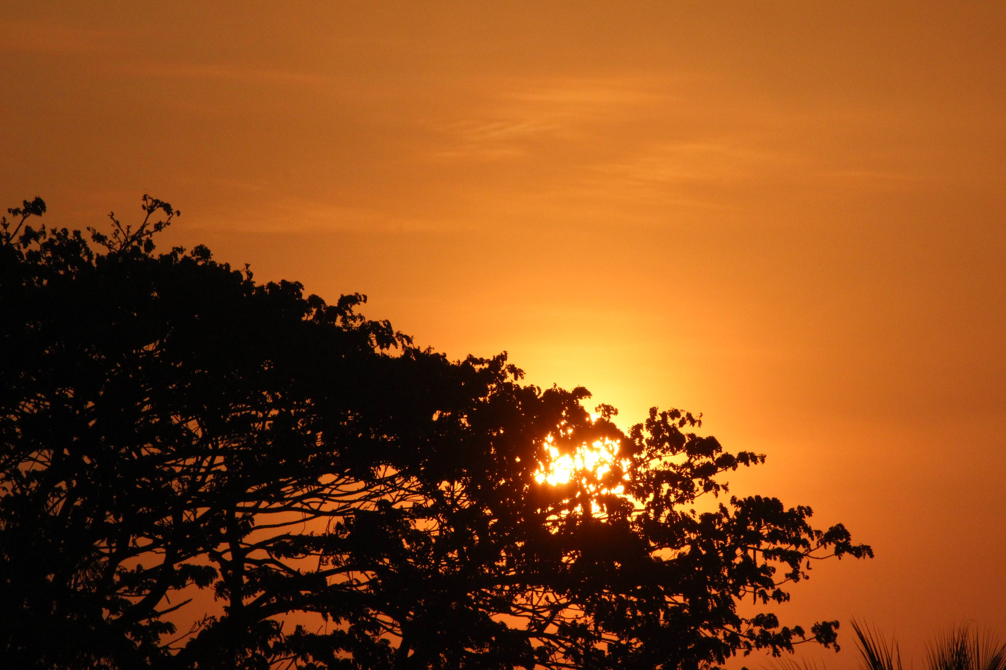 Kostenloses Stock Foto zu dämmerung, natur, himmel, sonnenuntergang