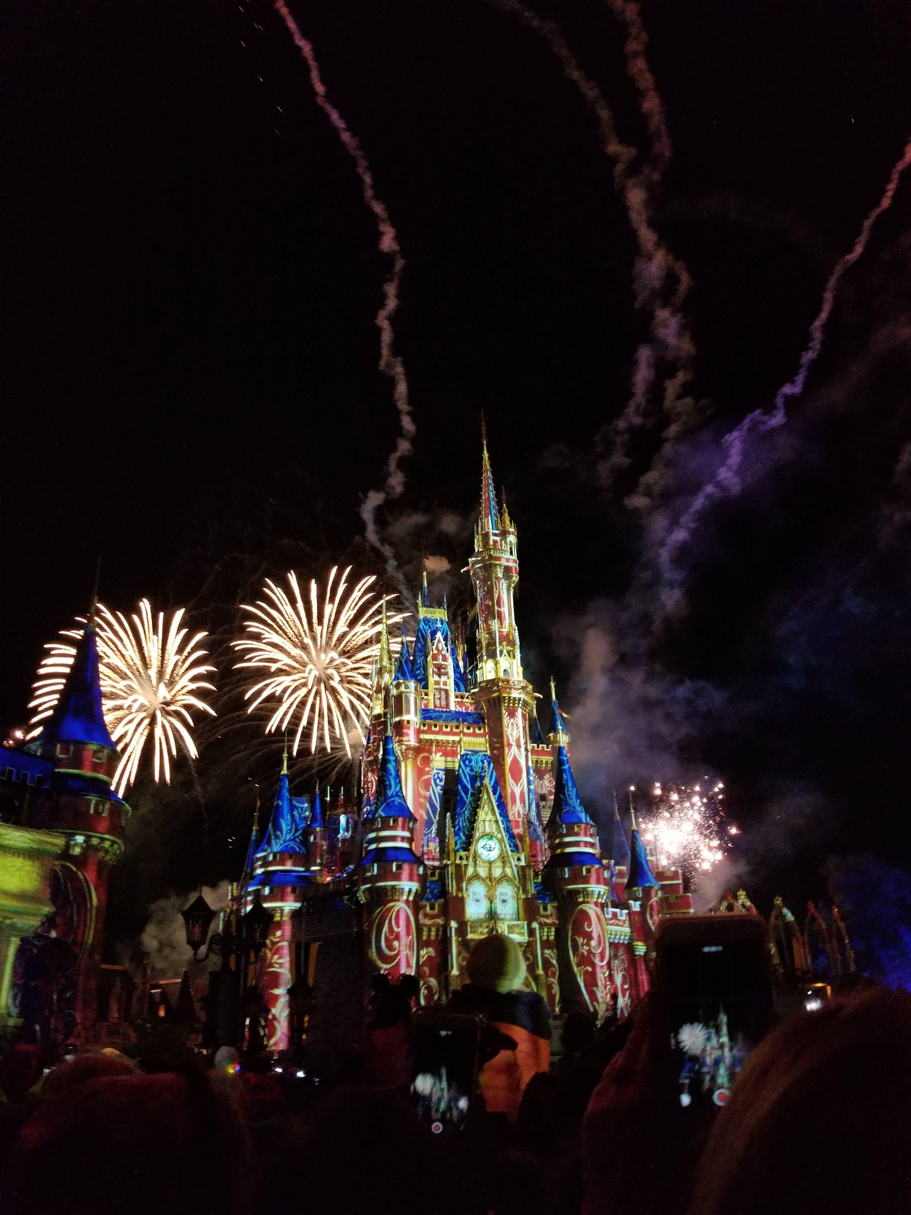 Photograph Of Disneyland