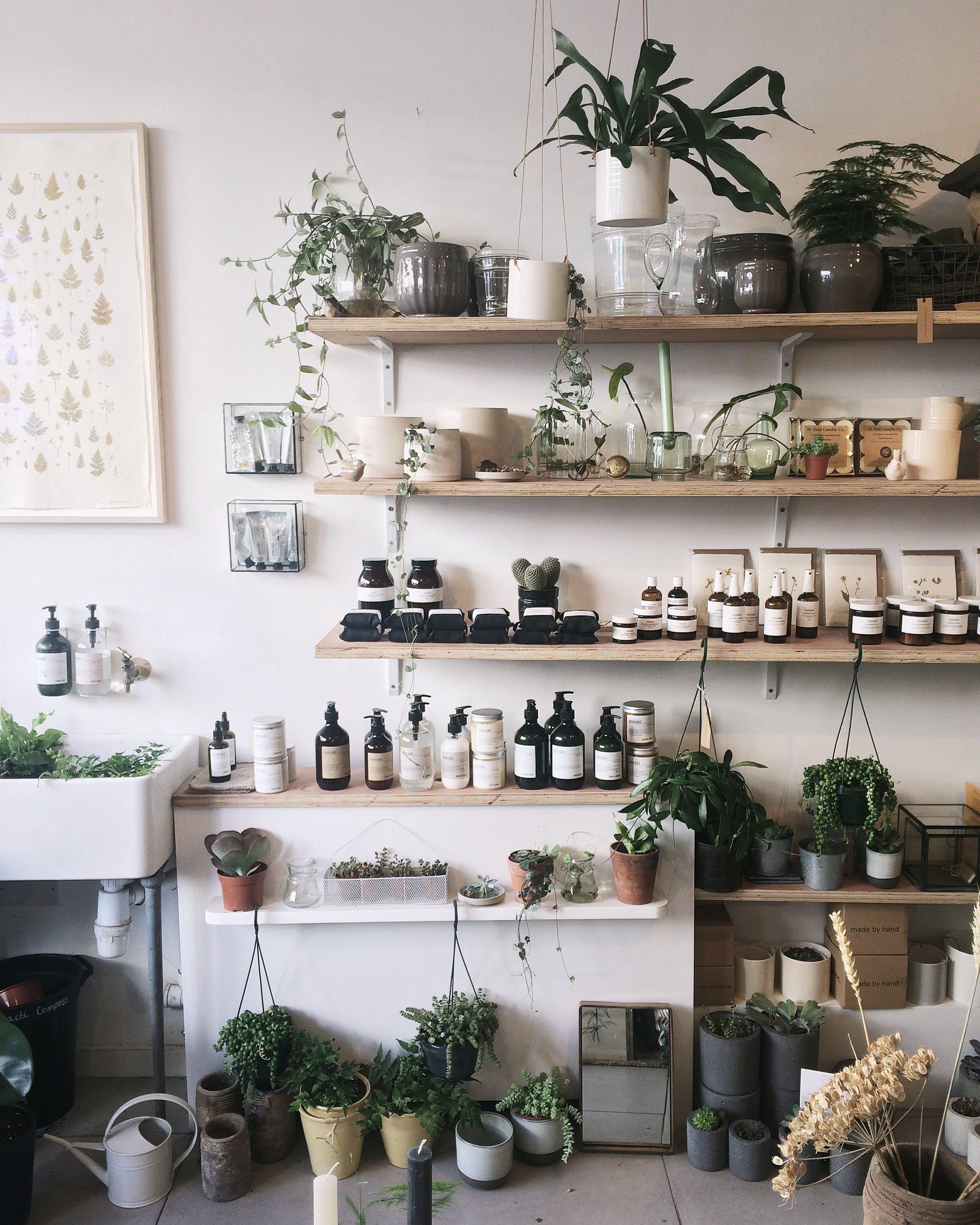 Pots on Beige Wooden Wall Shelf