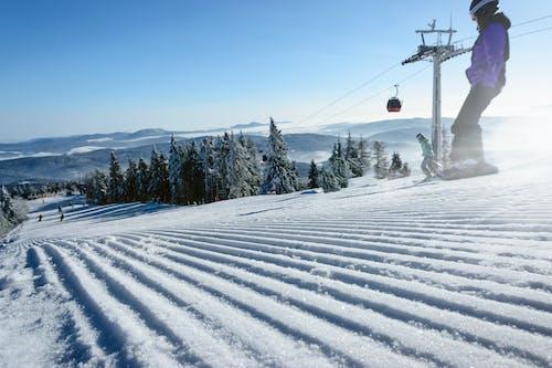 Ilmainen kuvapankkikuva tunnisteilla aktiivinen, alamäki, flunssa, hiihtää
