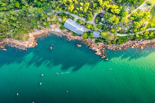 Free stock photo of bright, island, lake