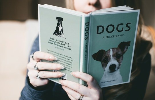 Woman Holding Dogs a Miscellany Book