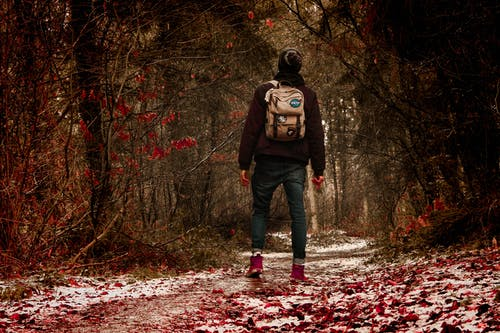 在森林中間穿黑夾克的人