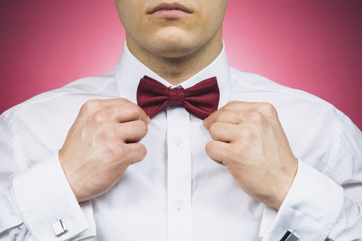 Free stock photo of bow tie, man, person, suit