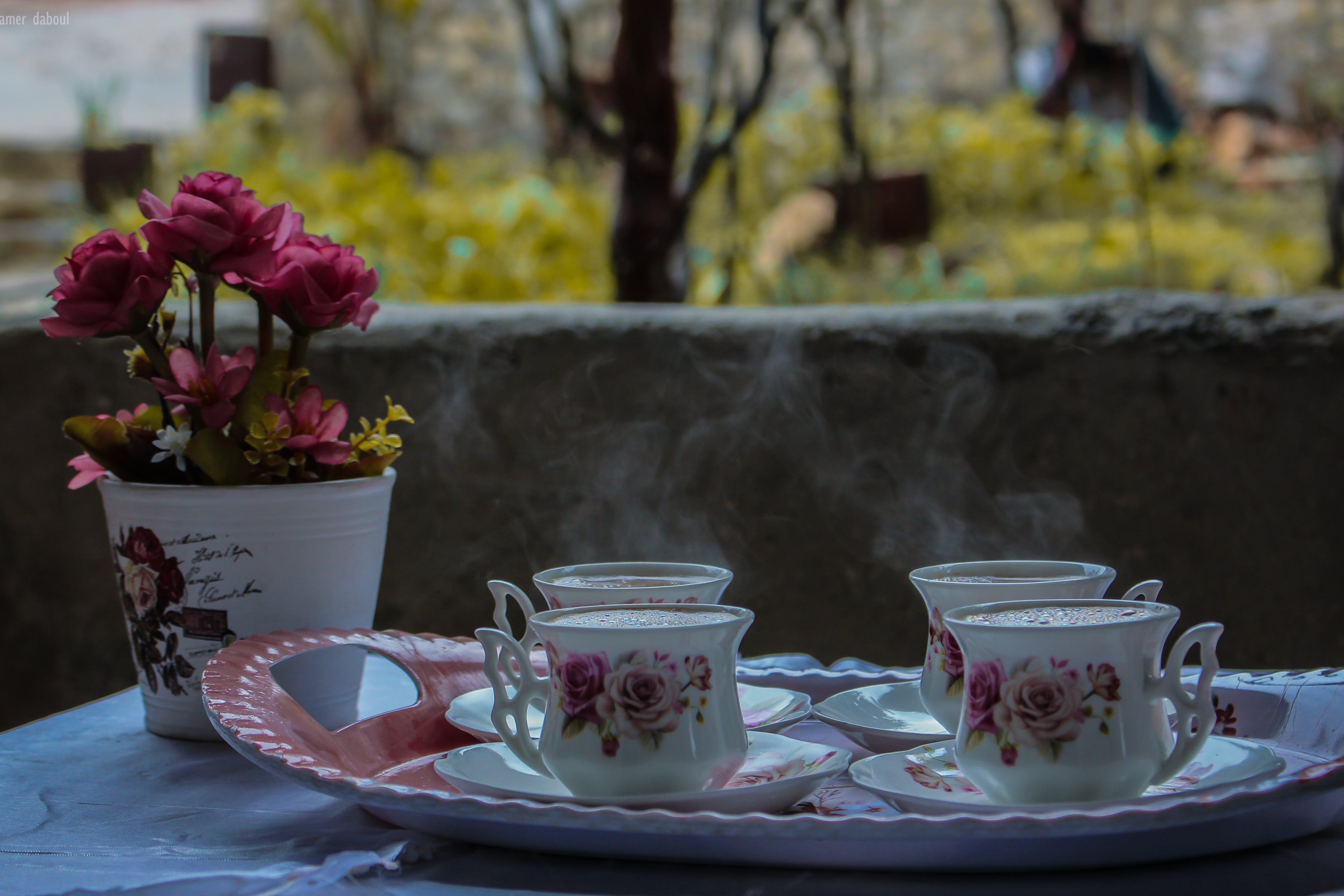artificial flowers, beautiful flowers, beverage