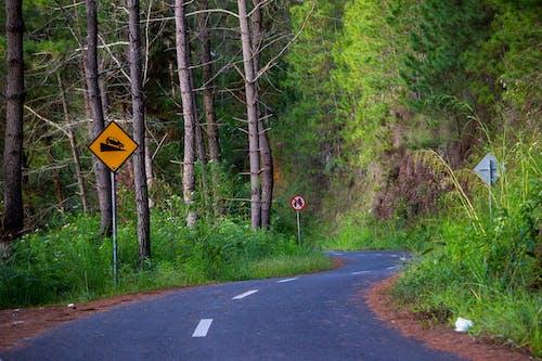 Free stock photo of asphalt, background, beautiful