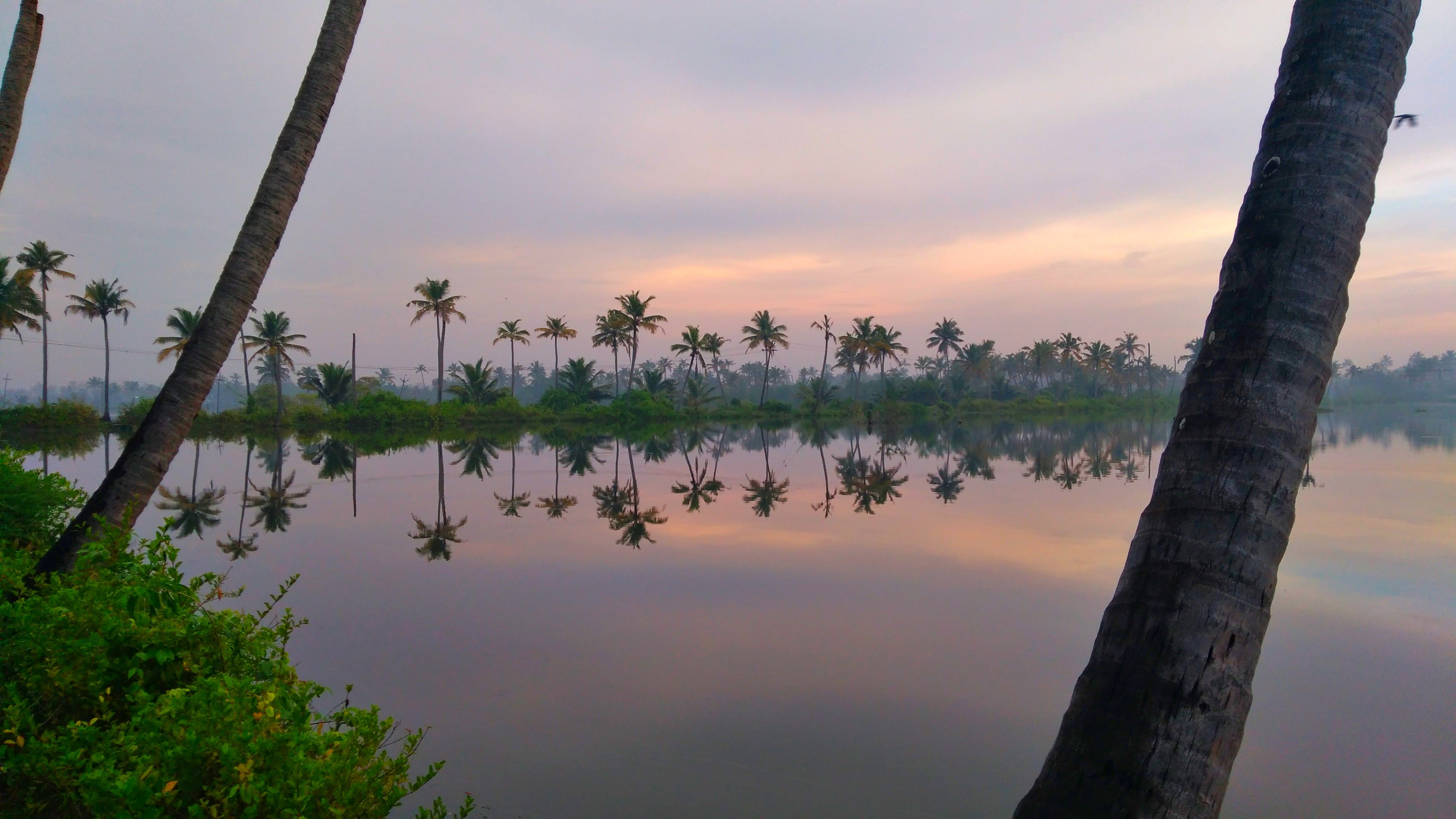 Free stock photo of early morning, kerala, water