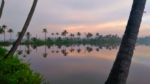 Free stock photo of early morning, kerala, water