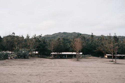 ビーチ, ファーム, フェンス, フューチャープルーフの無料の写真素材