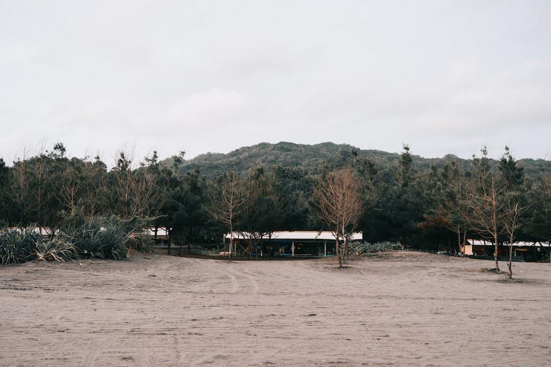 Darmowe zdjęcie z galerii z burza, dom, drewno