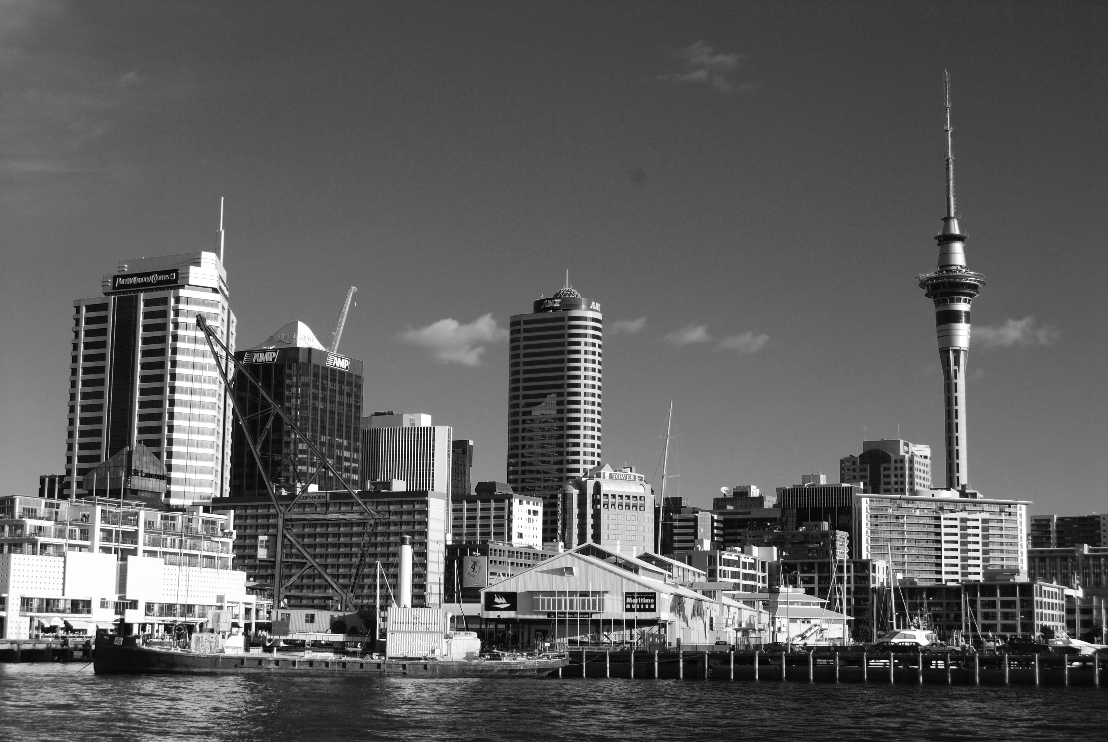 Free stock photo of auckland, city
