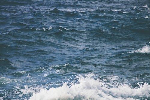 Immagine gratuita di acqua, mare, natura, oceano