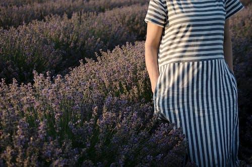 Woman Wearing a Striped Dress Standing on a Flower Field