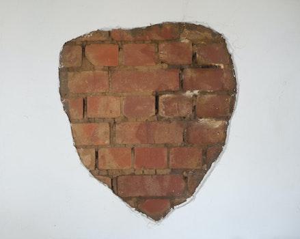 Kostenloses Stock Foto zu ziegel, backsteinmauer, ziegel in der mauer