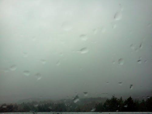 Gratis stockfoto met regen