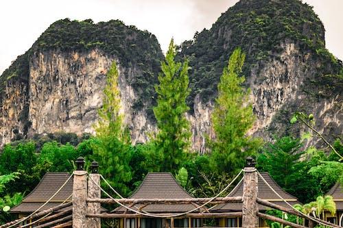 Immagine gratuita di alberi, capanne, luce del giorno, montagna