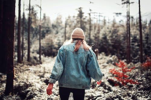 Foto stok gratis dingin, hutan, kaum wanita, memakai