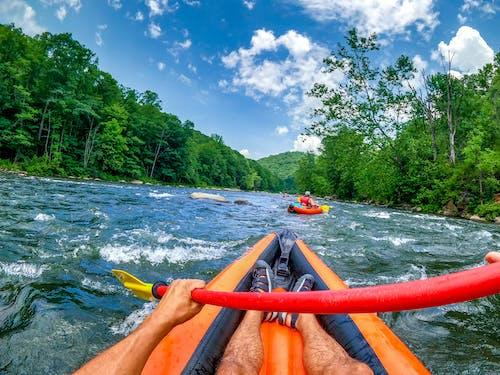 Безкоштовне стокове фото на тему «байдарки, велика річка, веселий»