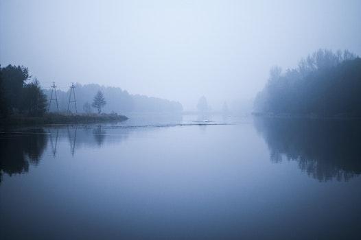 Kostenloses Stock Foto zu wasser, blau, wald, nebel