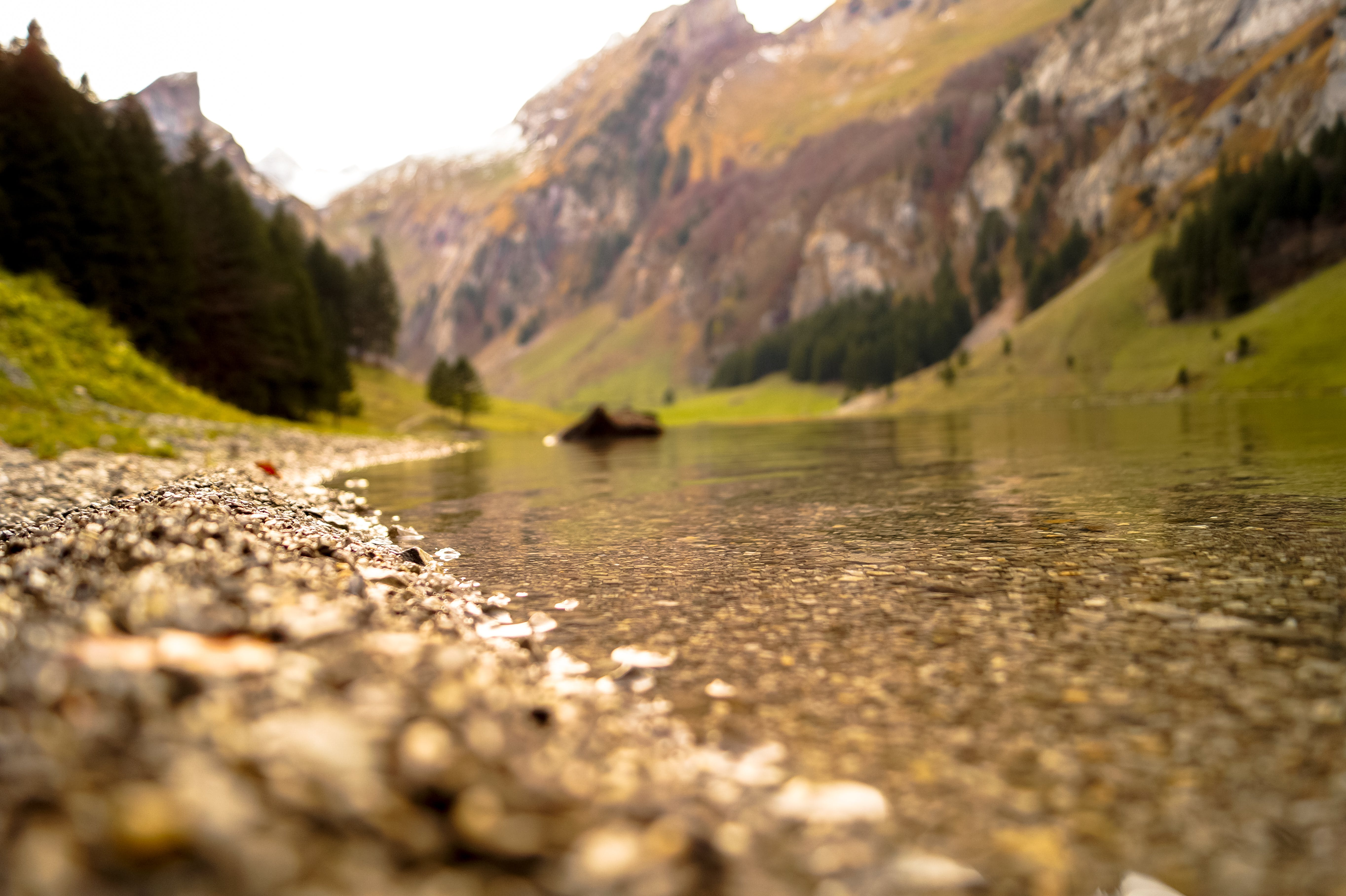 Shallow Focus Photography of Body of Water Near Mountain