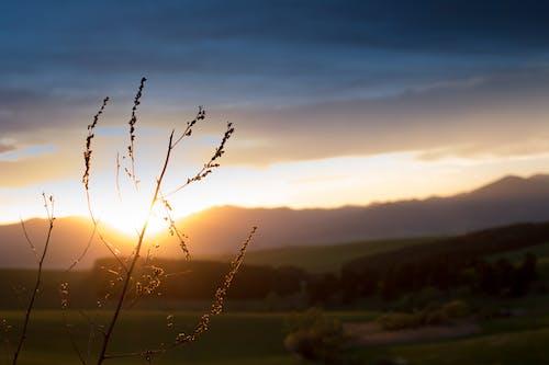 Gratis arkivbilde med anlegg, fjell, natur, solnedgang