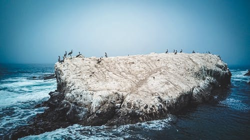 Group of People on Brown Rock Formation