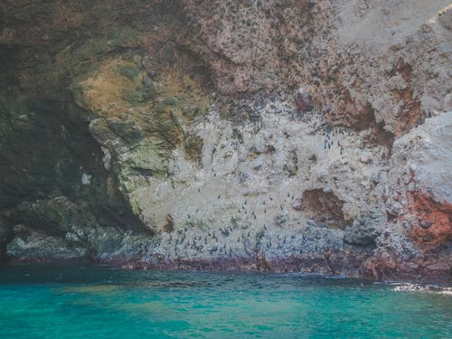 Free stock photo of 4k, background, bay