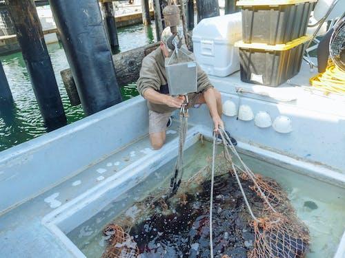 Foto profissional grátis de alimento, barco de pesca, barco de pescaria