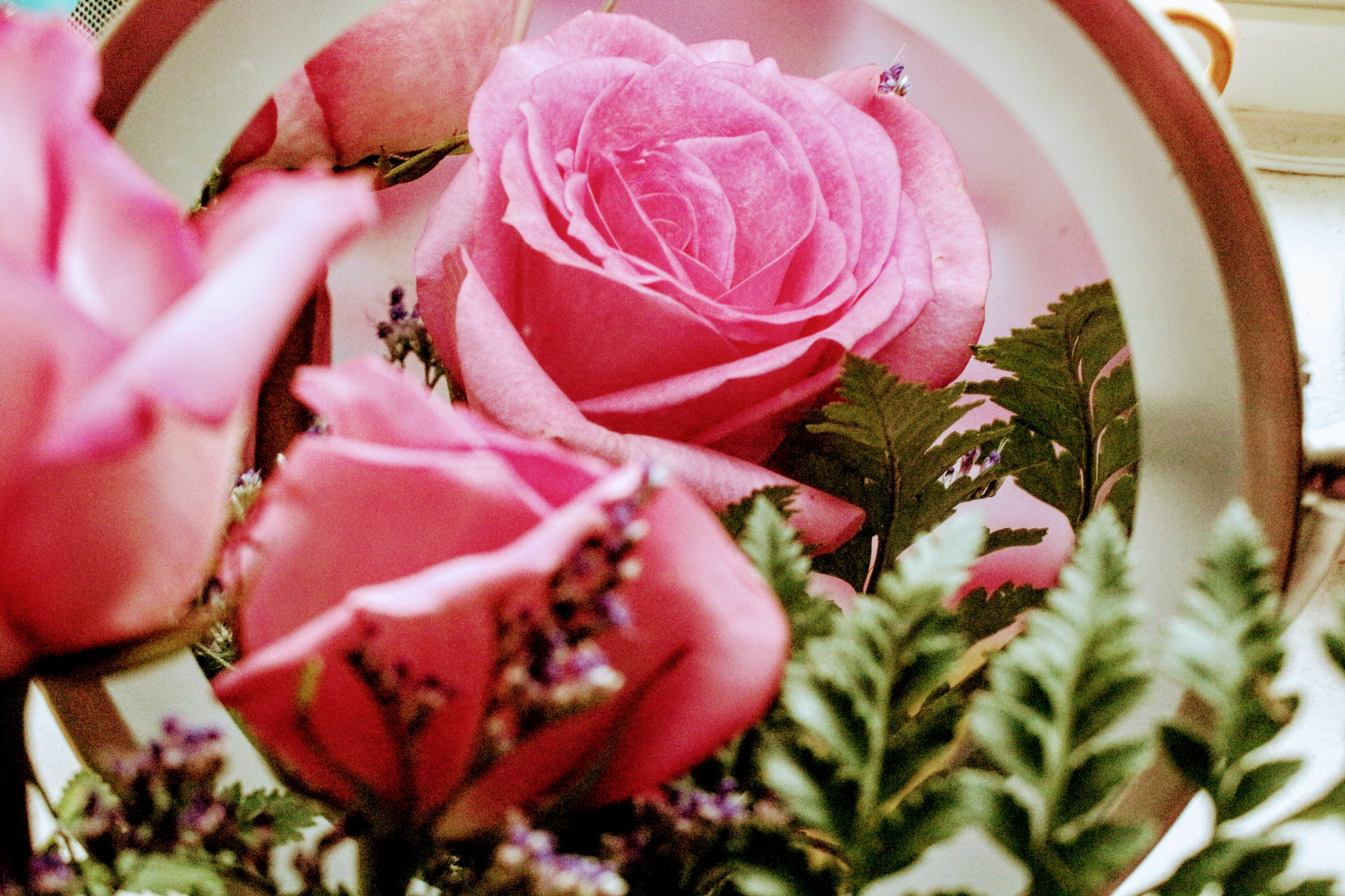 Pink Petaled Flowers Arrangement