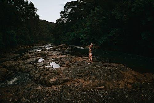 Foto profissional grátis de água, ao ar livre, árvore