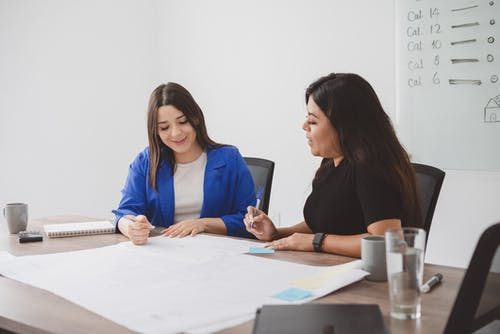 Female Colleagues Planning on a Project