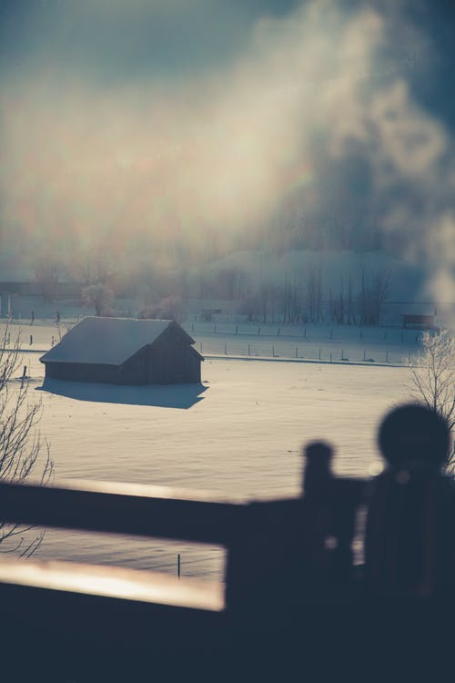 Fotos de stock gratuitas de cabaña, con niebla, cubierto de nieve, escarcha
