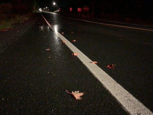 Free stock photo of asphalt, asphalt road, at night