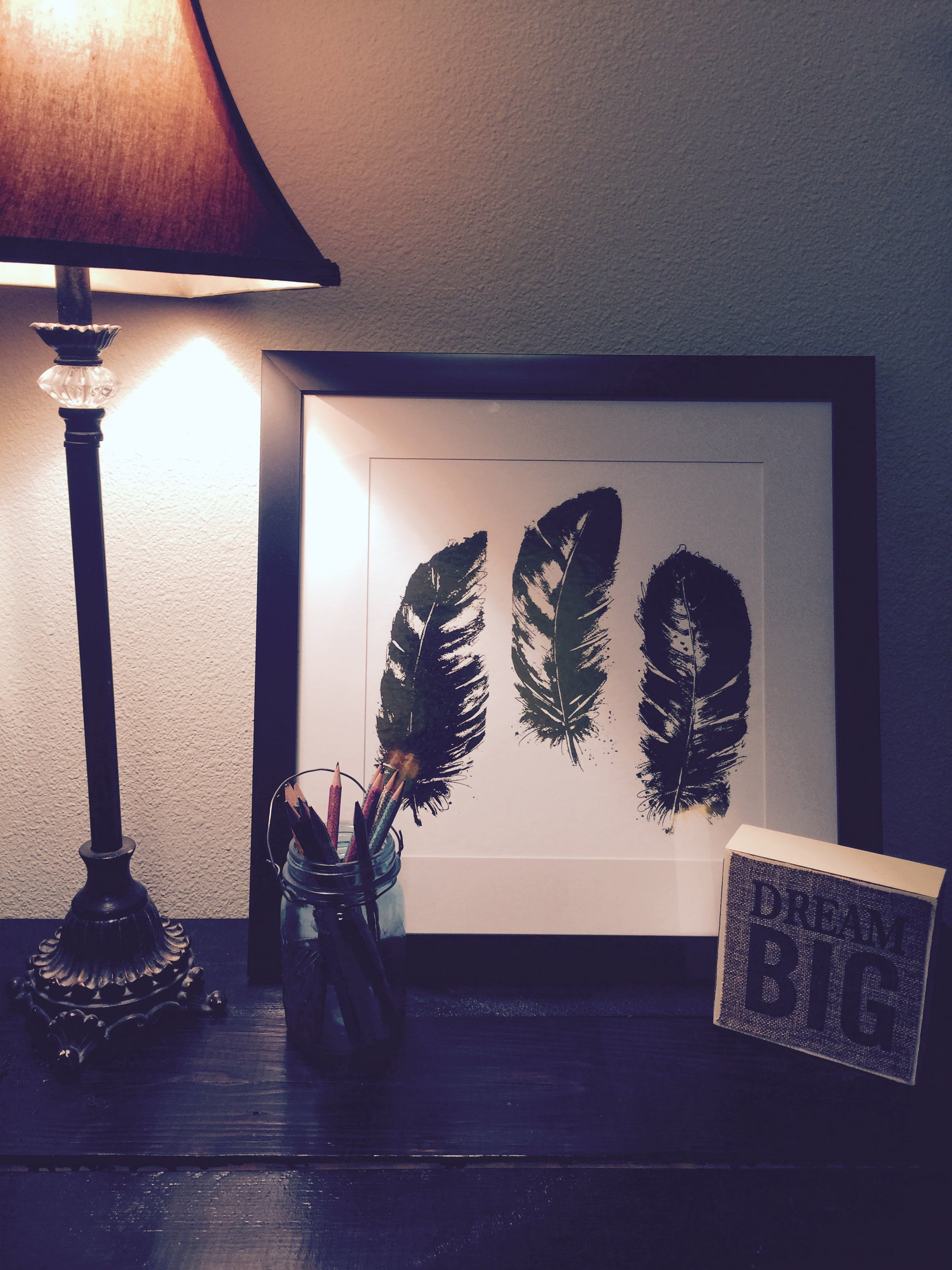 Black Feathers Painting Beside Brown and Black Lamp Shade