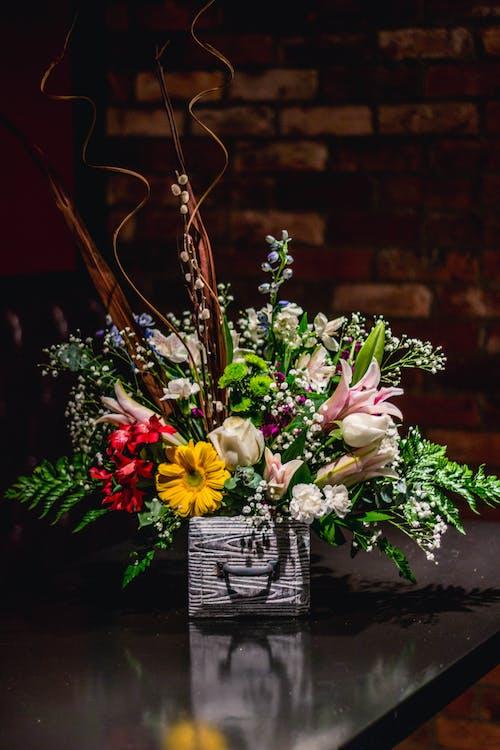 Бесплатное стоковое фото с букет, букет невесты, букет цветов, букеты цветов