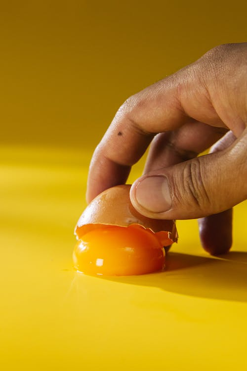 Person Holding Egg Shell