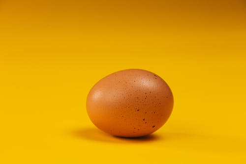 Brown Egg on Yellow Surface
