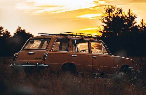 Gratis arkivbilde med bakgrunnsbilde, bil, bil i marka